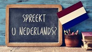 Dutch Lessons