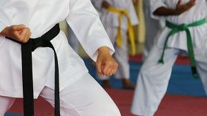 Taekwondo Lesson